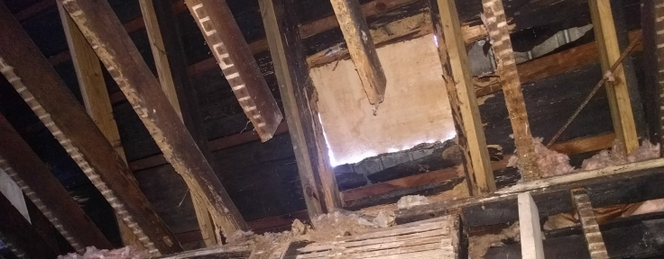 Floating beams that were clearly doing a great job holding up the ceiling