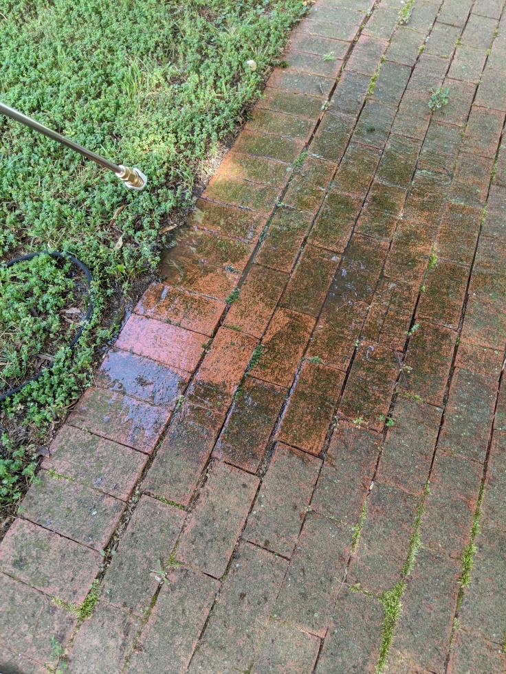Pressure washing front walk
