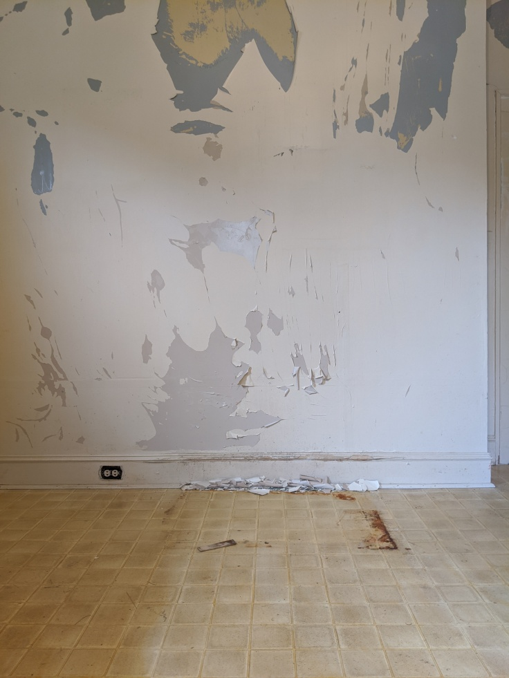 Painted Wall Before Peeling and Patching